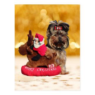 Postal Felices Navidad lindas de Yorkshire Terrier