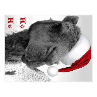 Postal Feliz camello Claus del navidad de Humpin