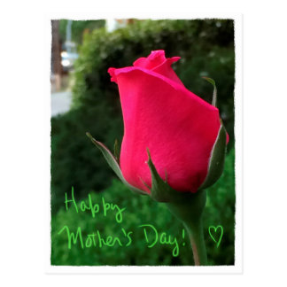 Postal feliz del día de madre del capullo de rosa