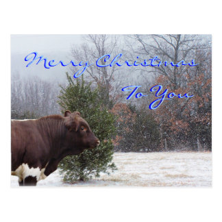 Postal Feliz Navidad-personalizar de PLB