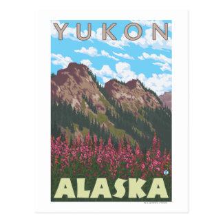 Postal Fireweed y montañas - el Yukón, Alaska