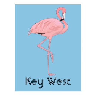 Postal Flamenco rosado de Key West la Florida