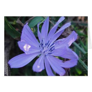 Postal flor apuesta azul de caza, en blanco