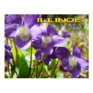 Postal Flor de estado de Illinois: Violeta