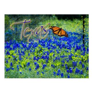 Postal Flor de estado de Tejas - Bluebonnets