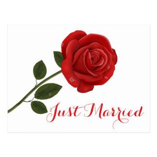 Postal Flor floral del rosa rojo - banquete de boda