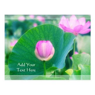Postal Flor rosado hermoso de la hoja del verde de la