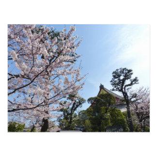 Postal Flores de cerezo Sakura de Tokio