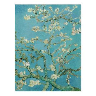 Postal Flores de la almendra de Vincent van Gogh