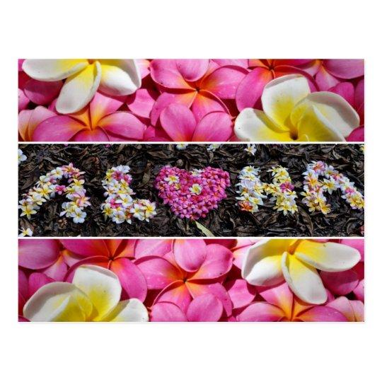Postal Flores del Plumeria de Hawaii de la hawaiana