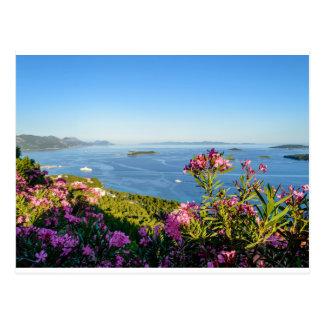 Postal Flores rosadas del Oleander