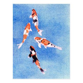 Postal flotante del azul de Koi