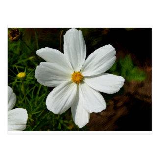Postal Flower flores móvil