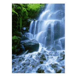 Postal Foto de la multa de la cascada del río Columbia