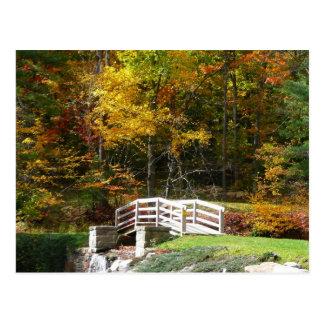 Postal Foto del paisaje del otoño del puente I de la