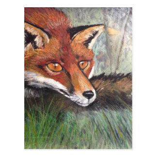 Postal Fox disimulado