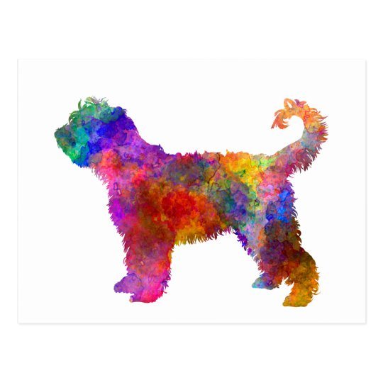 Postal French Water Dog in watercolor