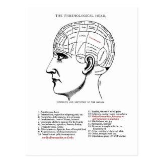 Postal Frenología médica de la humanidad