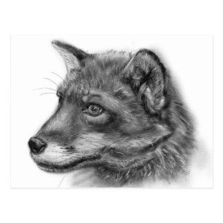 Postal ¡Frida, el Fox pequenito del escocés!