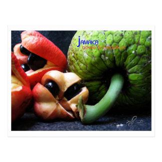 Postal Fruta y árboles del pan jamaicanos del Ackee