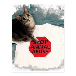 Postal Gatito del Tabby con un abuso del animal de la