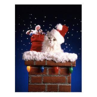 Postal Gatito lindo con el gorra de Santa