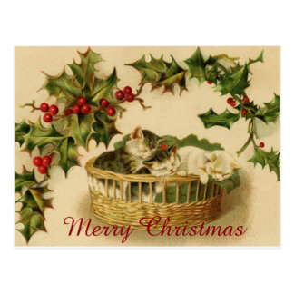 Postal Gatitos del navidad del vintage que duermen con