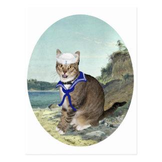 Postal Gato de Tabby en la playa