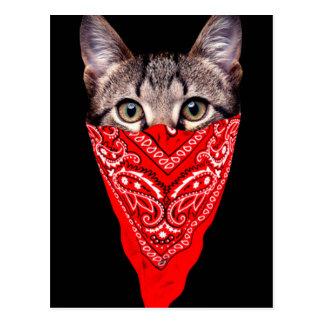 Postal gato del gángster - gato del pañuelo - cuadrilla