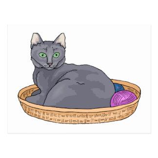 Postal Gato gris de la cesta