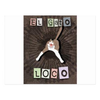 Postal Gato loco