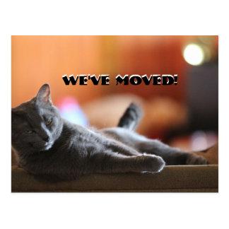 Postal Gato mullido diciendo que tenemos haber movido la
