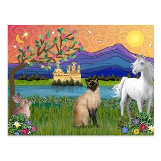 Postal Gato siamés - tierra de la fantasía