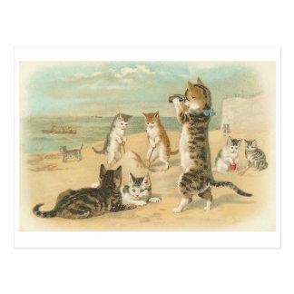 """Postal """"Gatos en vintage de la playa"""""""