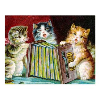 """Postal """"Gatos y un Squeezebox """""""