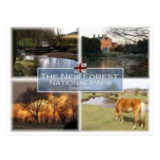 Postal GB Reino Unido - Inglaterra - nuevo bosque N.P. -
