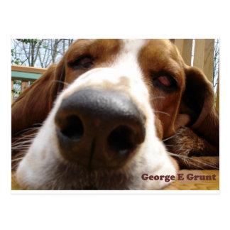 Postal George