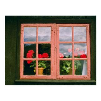 Postal Geranios violetas en la ventana de un tradicional