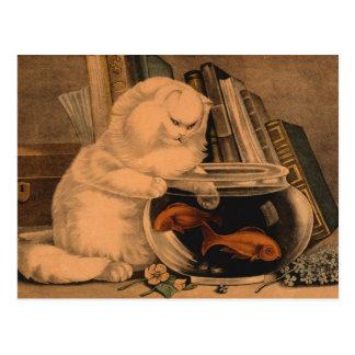 Postal Goldfish de cogida del gato lindo juguetón blanco