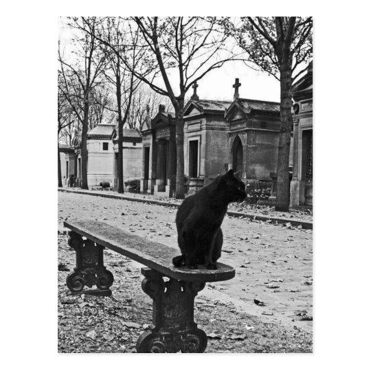 Postal gótica del gato del cementerio