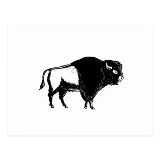 Postal Grabar en madera americano del lado del búfalo