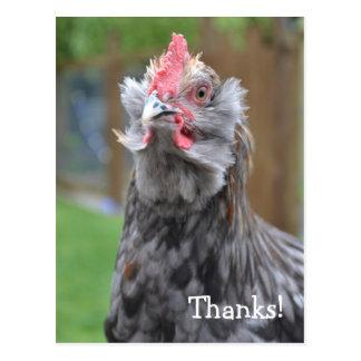Postal Gracias de un gallo feliz