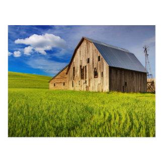 Postal Granero viejo rodeado por el campo de trigo de