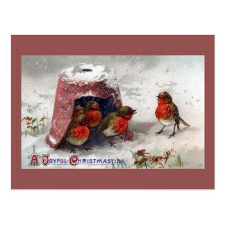 Postal Grupo inglés de los petirrojos bajo Navidad del