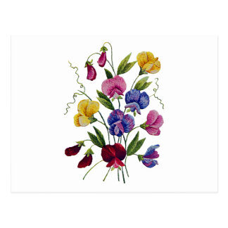 Postal Guisantes de olor hermosos, coloridos, bordados