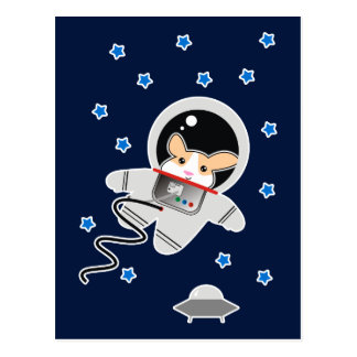Postal Hámster del astronauta