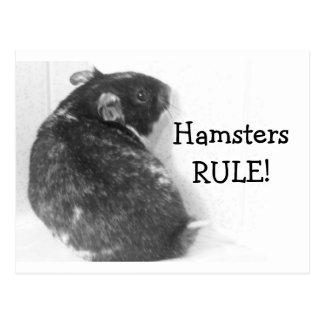Postal ¡HamstersRULE!