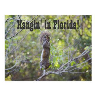 Postal Hangin en la Florida