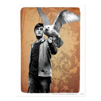 Postal Harry Potter 12