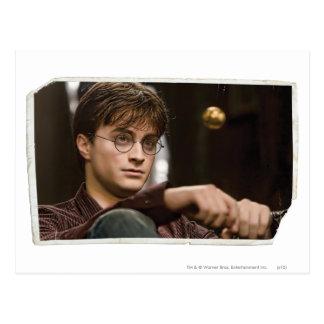 Postal Harry Potter 17